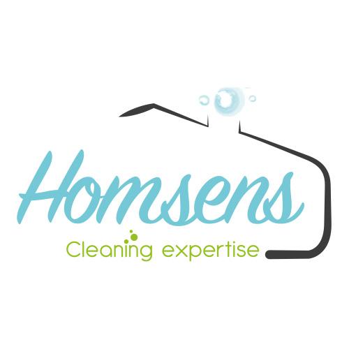 creation-identite-viselle-logo-homsens