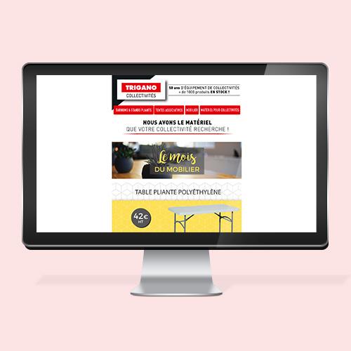 creation-newsletter-emailing-mensuel-madame-etiquettes-graphiste-freelance-trigano-lyon
